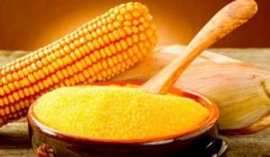 Raznoobrazie diet 2 300x175 - Разнообразие диет-2