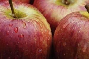 Pohudenie s pomoshhyu yablok 300x200 - Похудение с помощью яблок