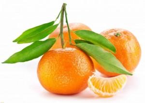 Rasteniya     nezamenimyiy istochnik e`nergii i vitaminov 3 300x213 - Растения – незаменимый источник энергии и витаминов-3