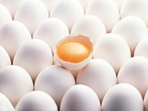 Pochemu stoit vklyuchit v ratsion kurinyie yaytsa 1 300x225 - Почему стоит включить в рацион куриные яйца-1