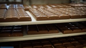 Kak delayut shokolad 1 300x168 - Как делают шоколад-1