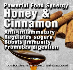 honey cinnamon new - honey-cinnamon-new.jpg