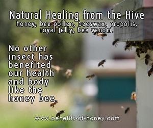healing from the hive new - healing-from-the-hive-new.jpg