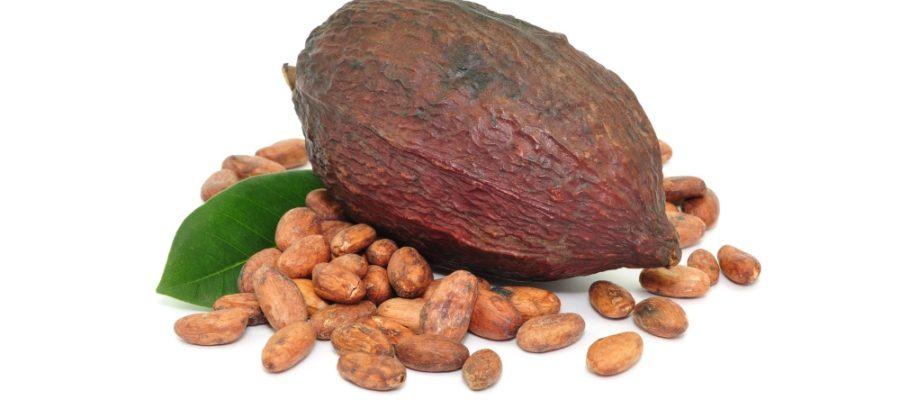 kakao bobi3 900x400 - Как можно употреблять какао бобы?